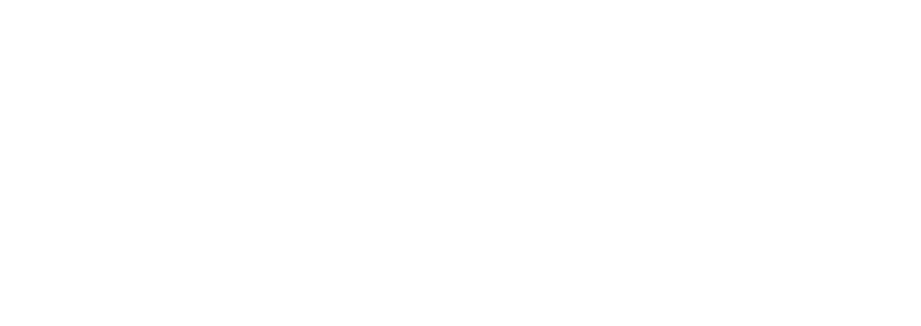 RISE Leaders